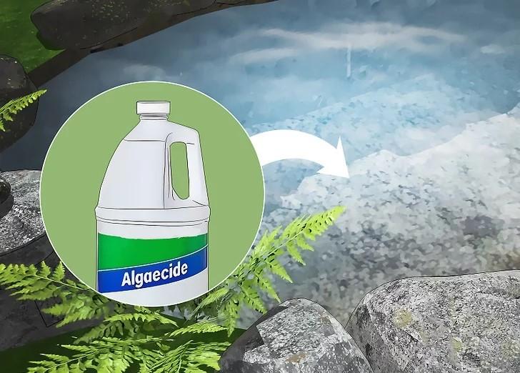 aid717614-v4-728px-Get-Rid-of-Algae-in-Ponds-Step-9-Version-2.jpg.jpg